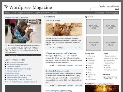 wordpress_magazine.jpg