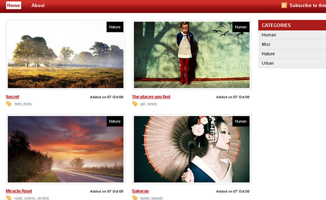 free-photography-wordpress-theme-6
