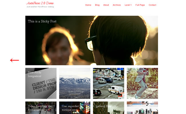 free-photography-wordpress-theme-7