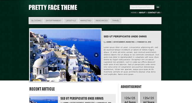 free-wordpress-themes-24